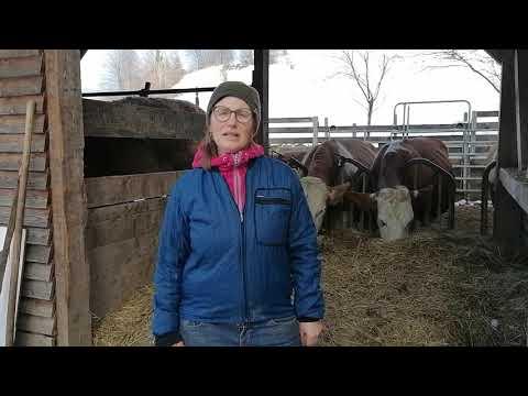 Kleine Höfe fördern! Investitionsförderung gerecht verteilen! - Christine Pichler-Brix